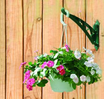 Place your flowers in hanging ba...
